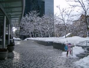 Snowy Vancouver December 2008