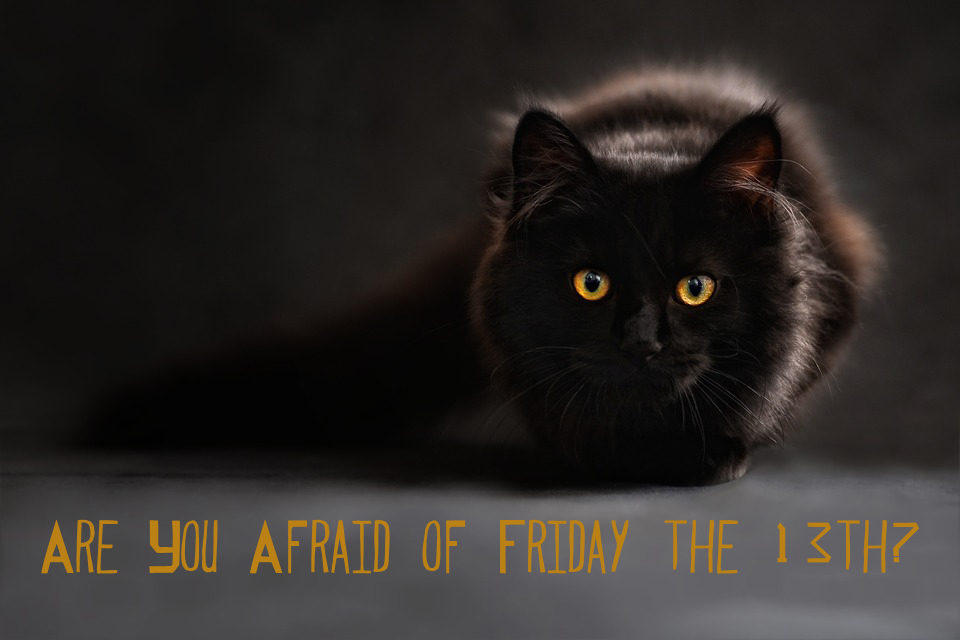 Are You Afraid of Friday the 13th? | The Scribe's Desk